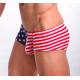 BRAVE PERSON pánské boxerky America